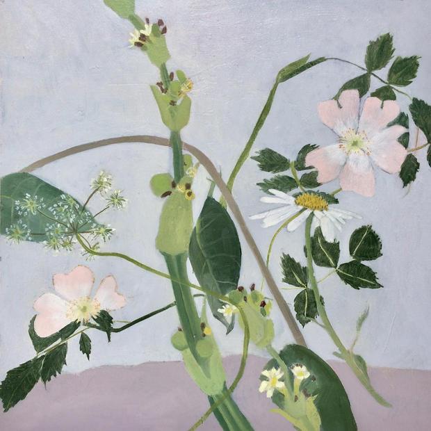 Garden Flowers with Daisy