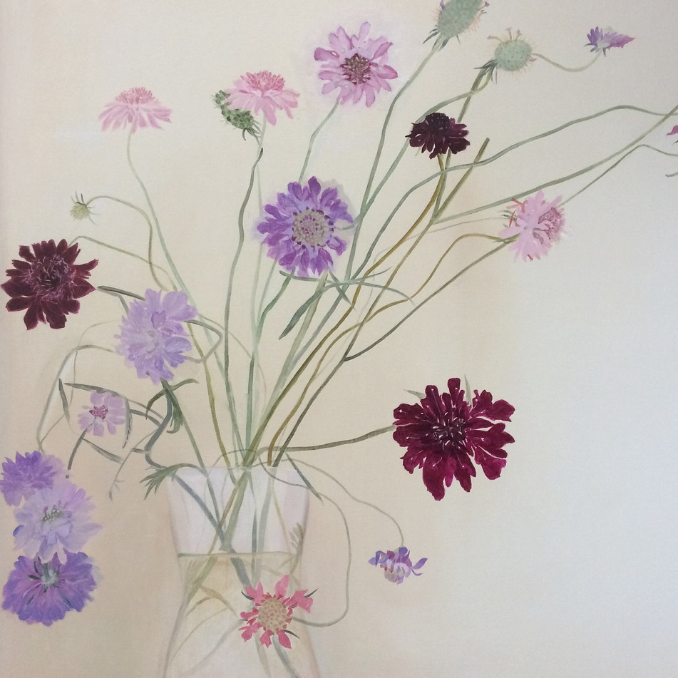 Glorious Scabious