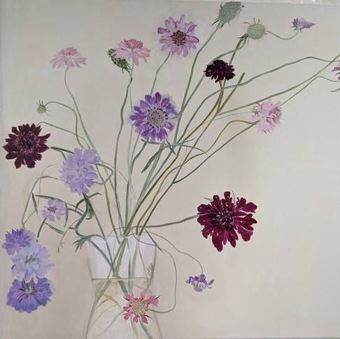 Glorious Scabious (Sold)