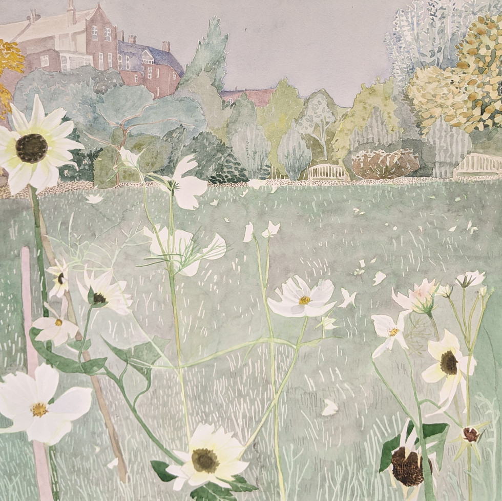 A London Garden, late summer