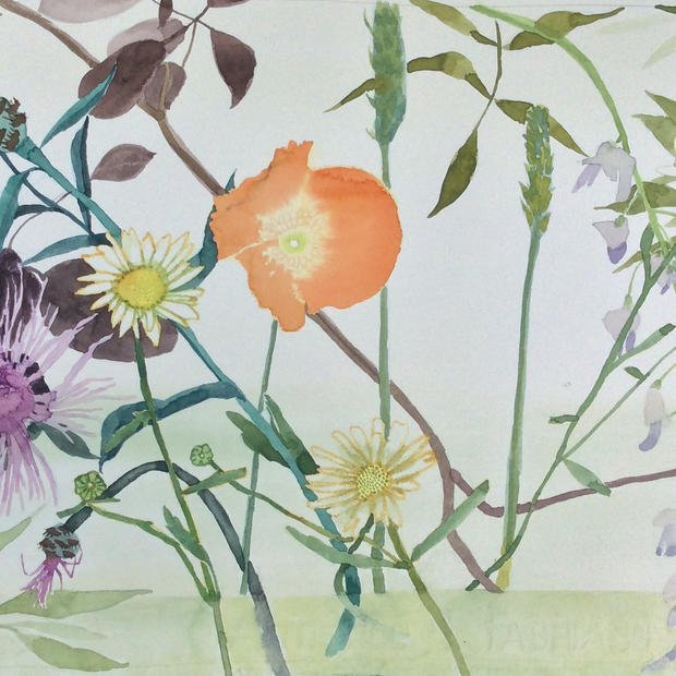 Garden Flowers with a Poppy