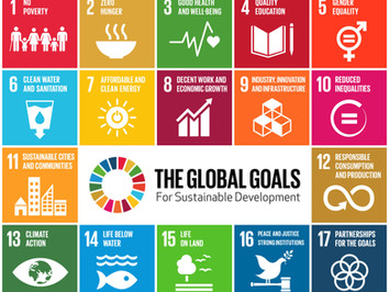 Connect UN Sustainable Development Goals to business