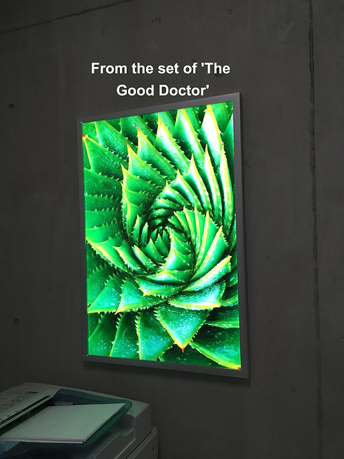 "LED Snap Frame 18"" x 24"""
