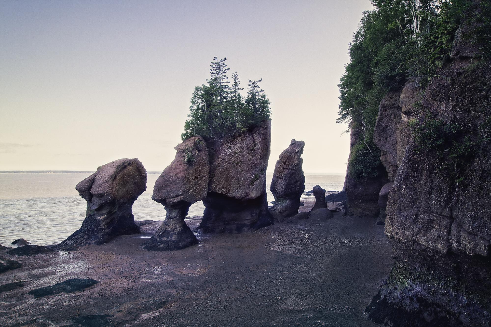 hopewell rocks traitement