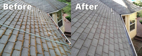 roof-cleaning-service.jpg