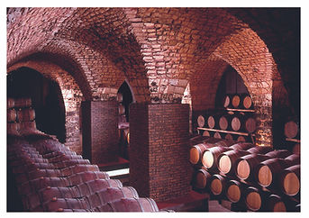 Chateau Musar's Winery.jpg