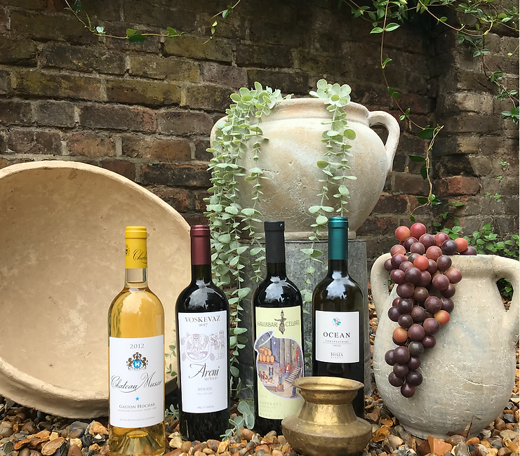 Wine subscription club offering Ancient Wines Collection