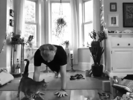 LIVE from my living room!  Online Yoga classes available in May!