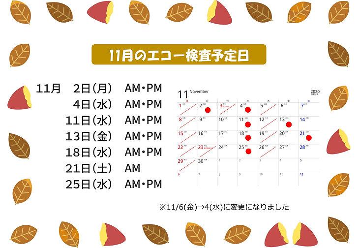 11月のエコー検査予定日_2-1.jpg