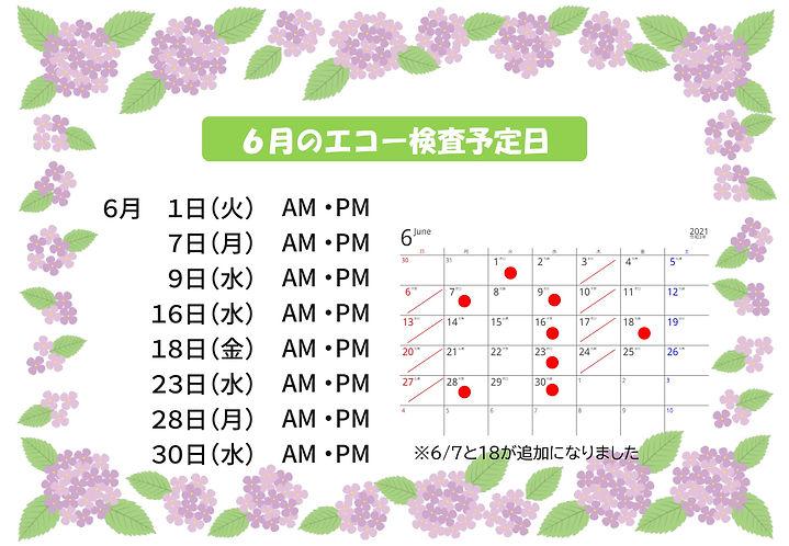2021.6月のエコー検査予定日2-1.jpg