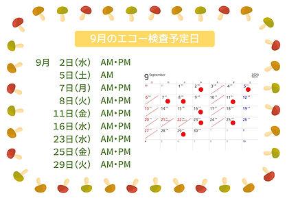 9月のエコー検査予定日-1.jpg