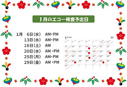 2021.1月のエコー検査予定日-1.png