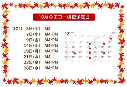 10月のエコー検査予定日-1.jpg
