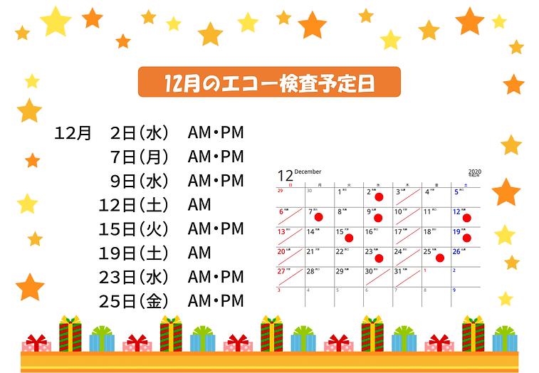 12月のエコー検査予定日-1.png