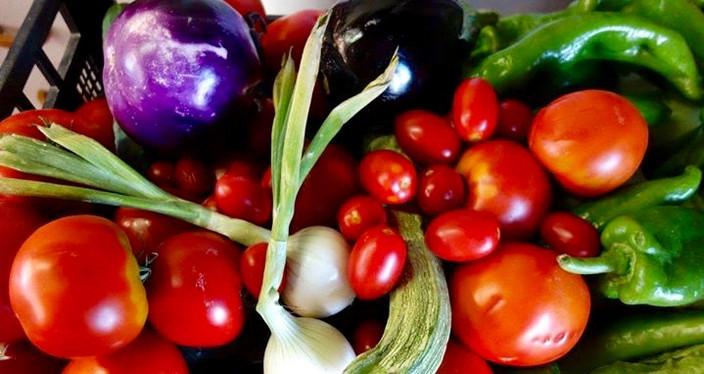 Unser Gemüse vom eigenen Garten!