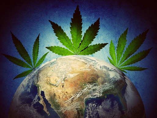 Why Hemp- an environment friendly, anti-cancerous alternative to toxic industries is still illegal?