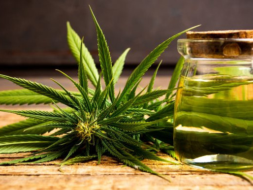 Case Study of Patients treated with Hemp oil in India and benefit of it.