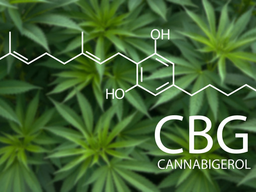What is CBG and its medical benefits?