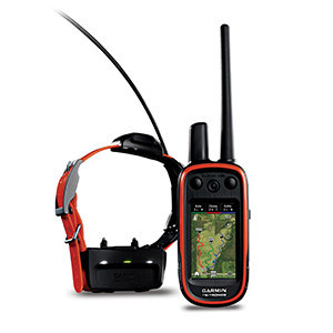Garmin Alpha 100 with T10 Collar