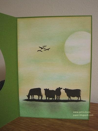 Farm Fresh Set Milk Cans Cows inside