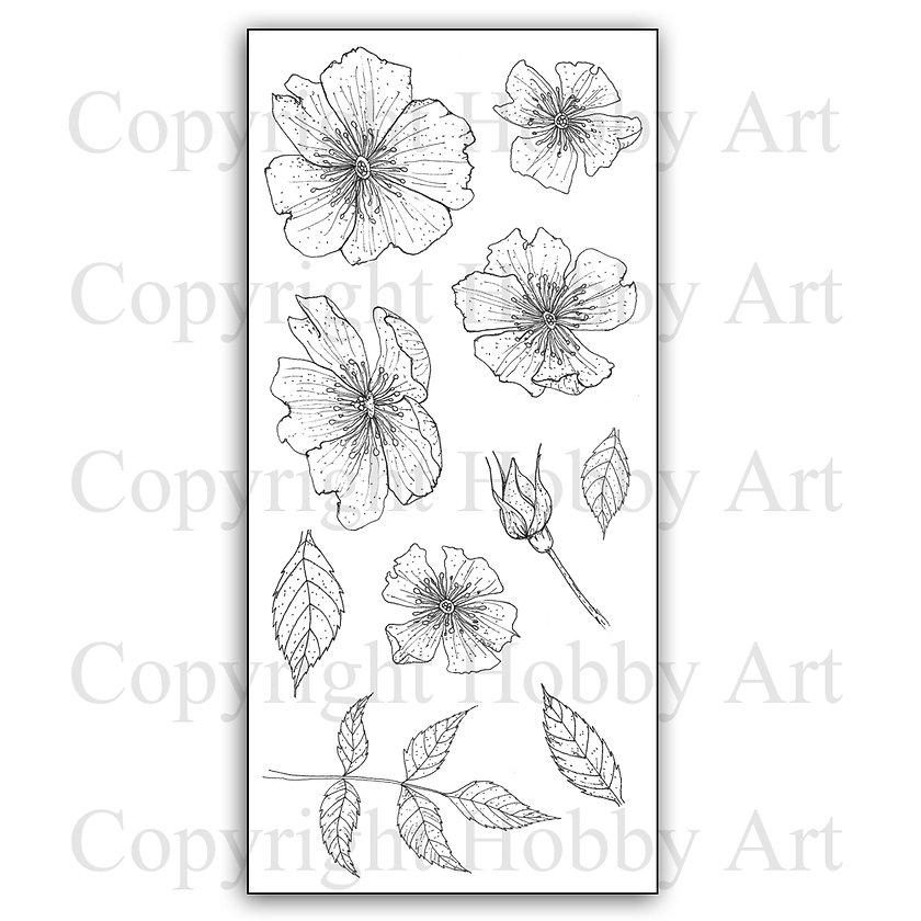 Wild Roses Hobby Art Clear stamps