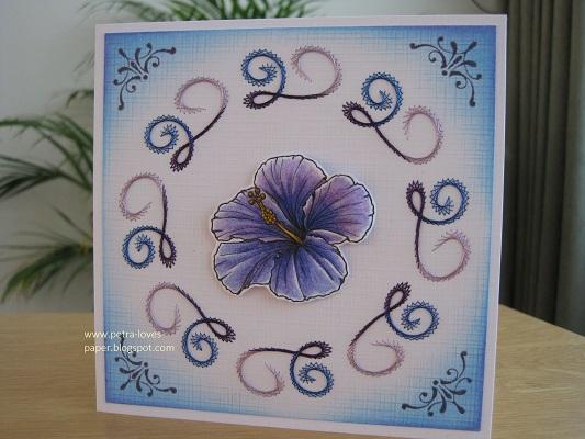 Hibiscus Flower 1 Petra