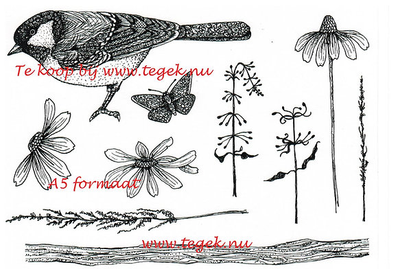 Hobby art clear stamps Nature Reserve