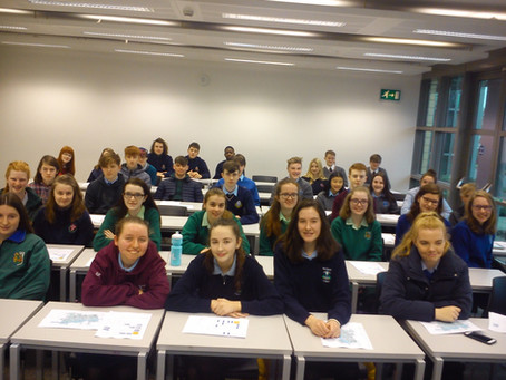 Students practice teaching Maths Circles during UCC TY Work Experience