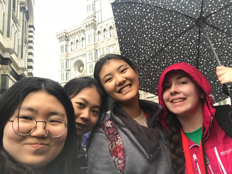 Ireland participates in the European Girls Mathematical Olympiad on 9-15 April 2018 in Florence.