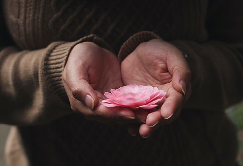 Sweater lotus
