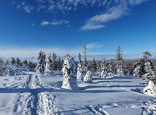 Lappland.jpg