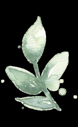 watercolor_leaves_07.png