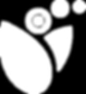 Logo_wei0-50.png