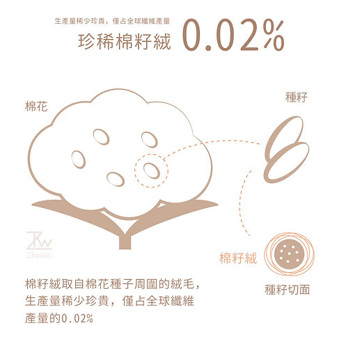 棉籽絨介紹圖02.jpg