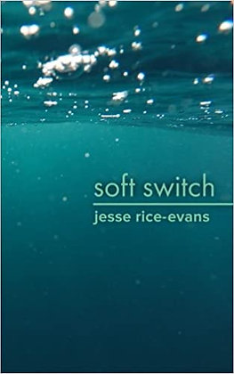Soft Switch by Jesse Rice-Evans