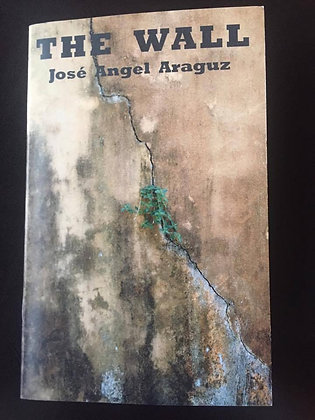 The Wall by Jose Angel Araguz