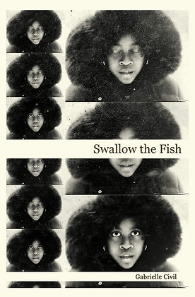 Swallow the Fish by Gabrielle Civil