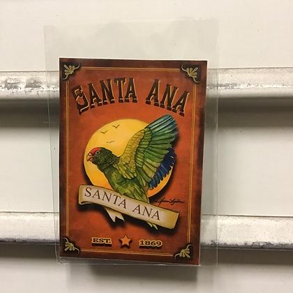 Green Parrots of Santa Ana Magnets by Marina Aguilera