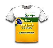 P13 - site UNIAO.png