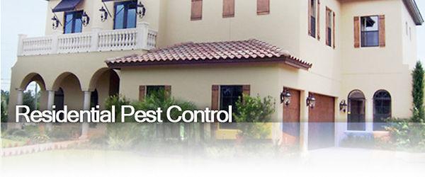 Pest control home