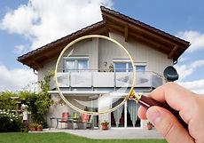 WDO real-estate inspection