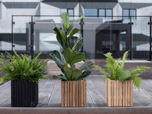 How To Create A Sustainable Office Space