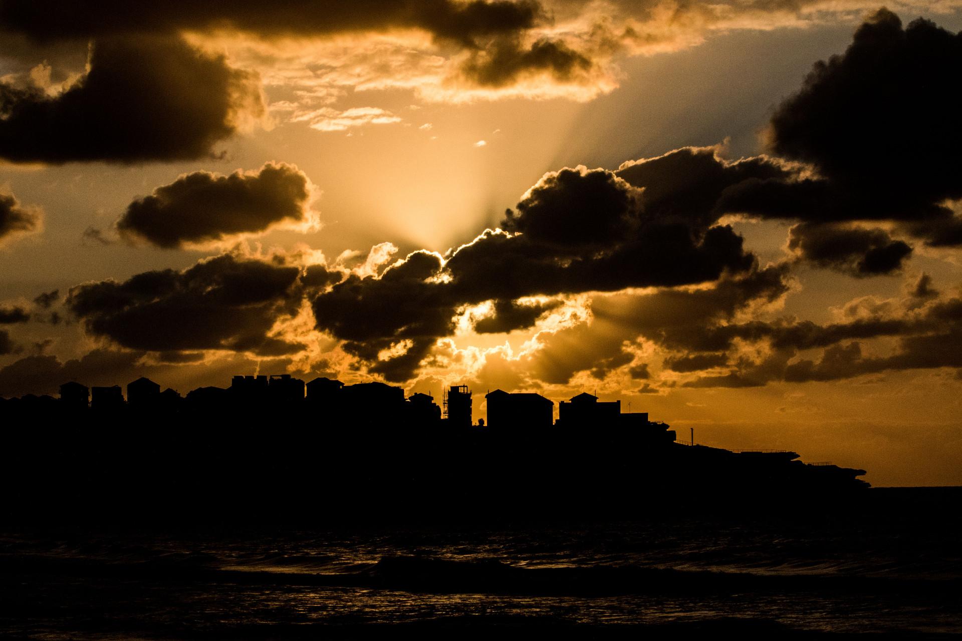 Bondi sunrise silhouette