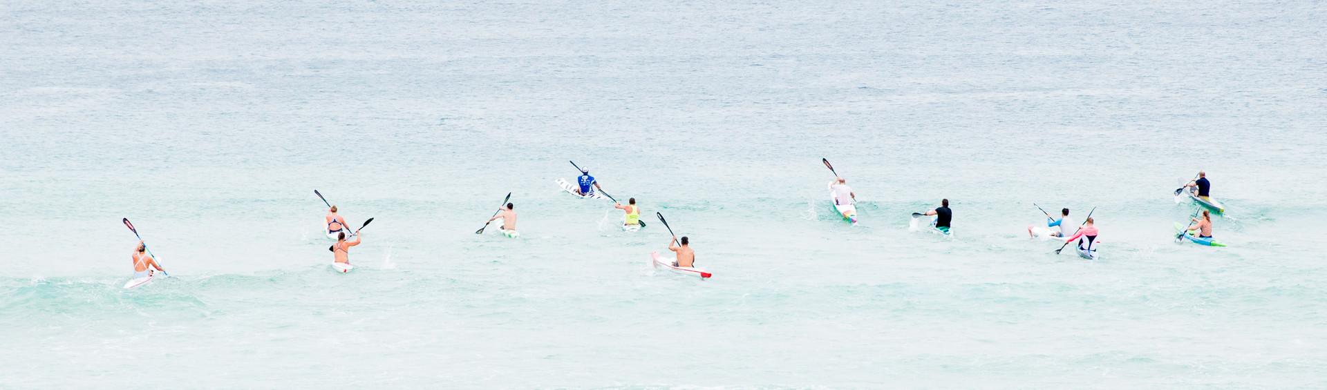 kayaks dot the water, Bondi