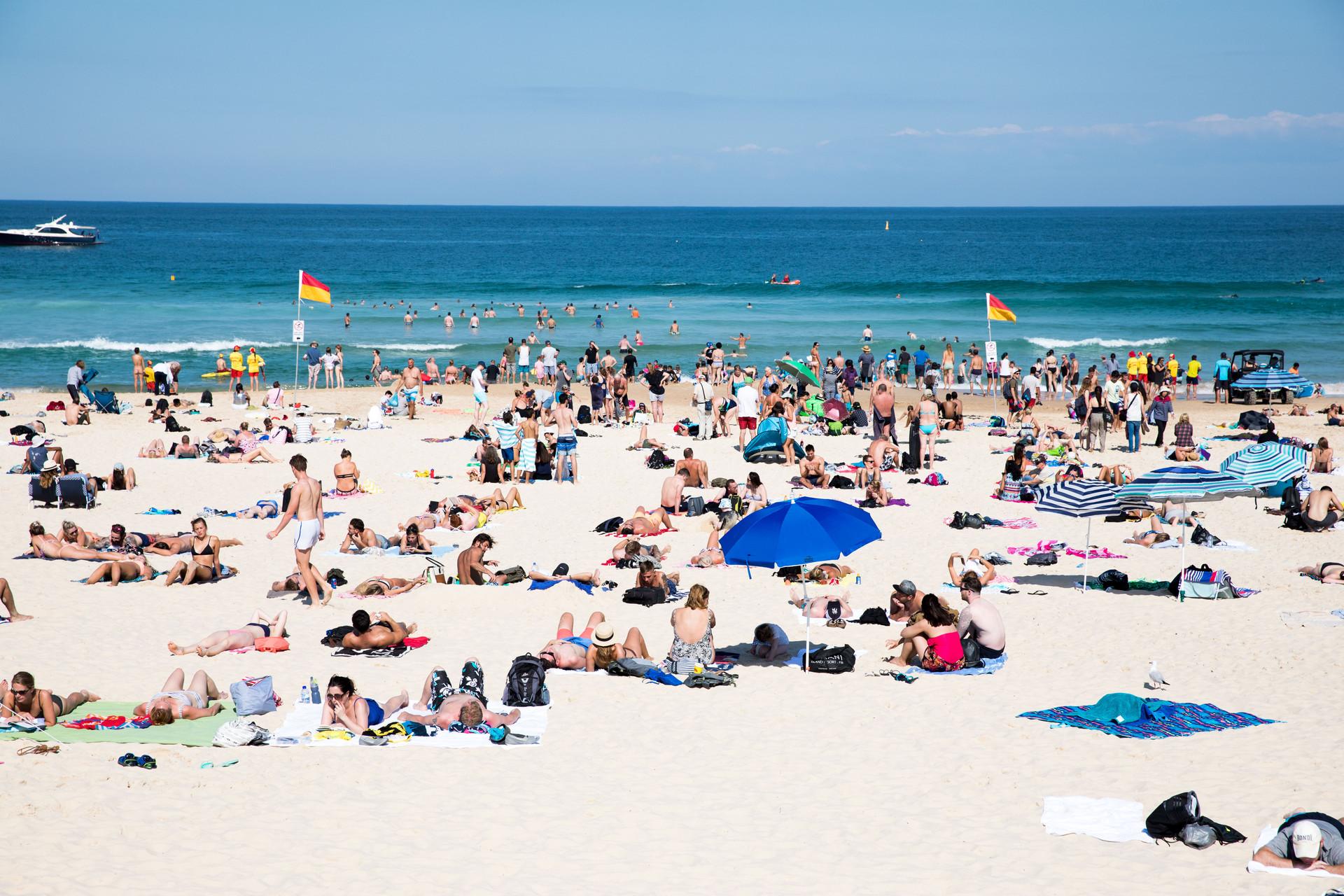 Bondi Beach, classic summer day