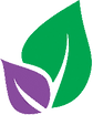 Team Senior Advisor Referral Placement Service assistance logo