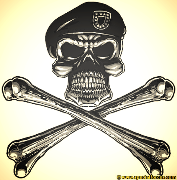 Army Skull &Crossbones_edited.jpg