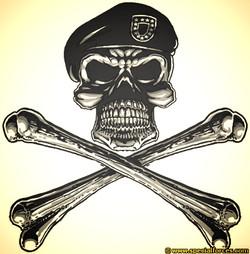 Army Skull &Crossbones_edited.jpg