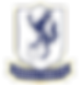 Enfield_Town_F.C._logo.png