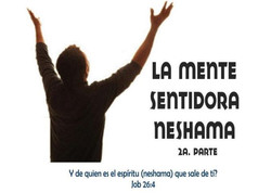 Mente Sentidora Neshama 2
